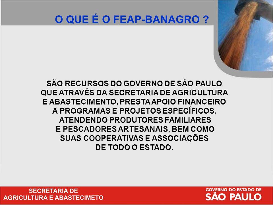 SÃO RECURSOS DO GOVERNO DE SÃO PAULO QUE ATRAVÉS DA SECRETARIA DE AGRICULTURA E ABASTECIMENTO, PRESTA APOIO FINANCEIRO A PROGRAMAS E PROJETOS ESPECÍFI