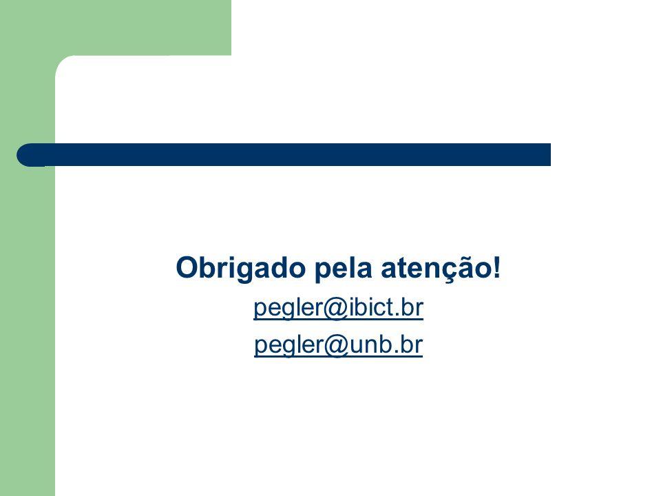 Obrigado pela atenção! pegler@ibict.br pegler@unb.br