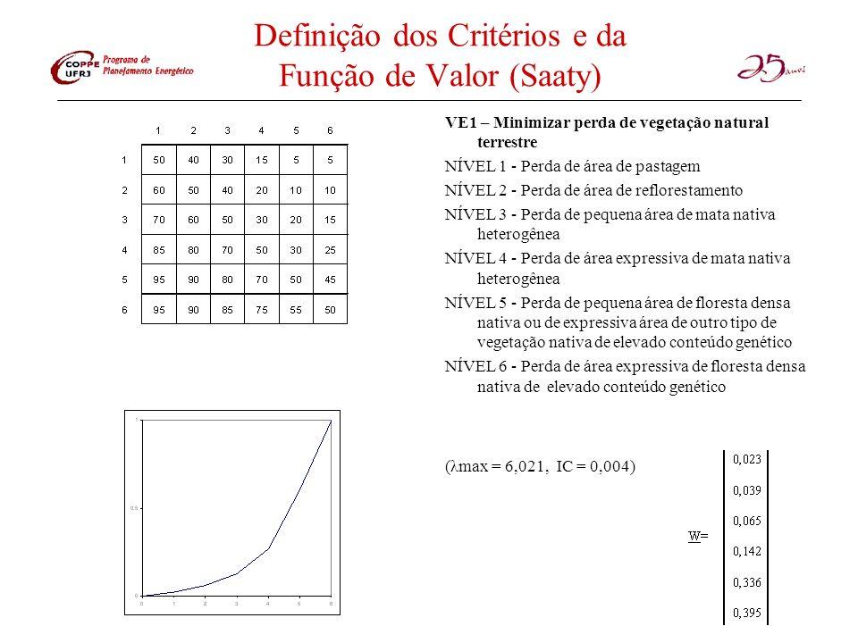 Definição dos Critérios e da Função de Valor (Saaty) VE1 – Minimizar perda de vegetação natural terrestre NÍVEL 1 - Perda de área de pastagem NÍVEL 2