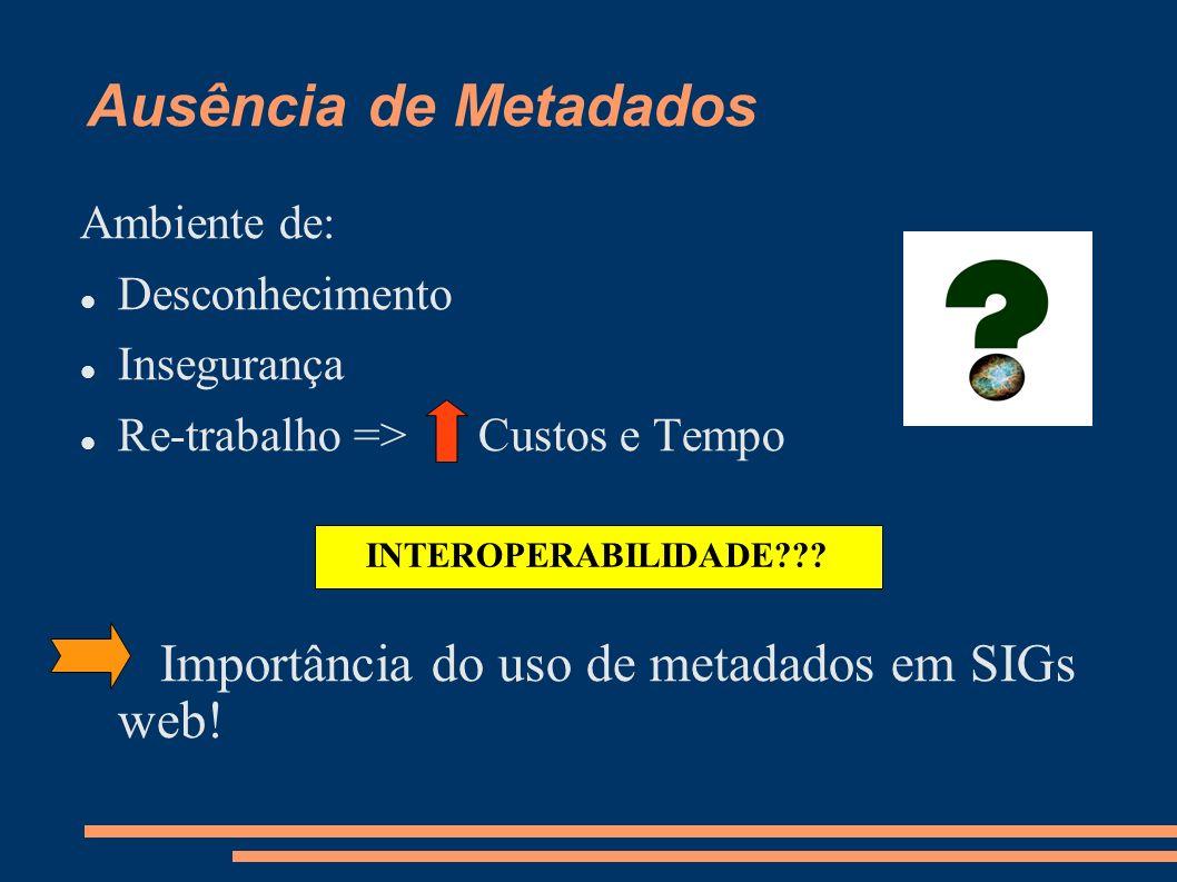 Ausência de Metadados Ambiente de: Desconhecimento Insegurança Re-trabalho => Custos e Tempo Importância do uso de metadados em SIGs web.