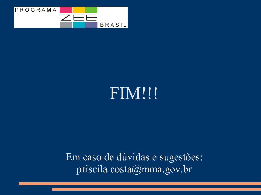 FIM!!! Em caso de dúvidas e sugestões: priscila.costa@mma.gov.br