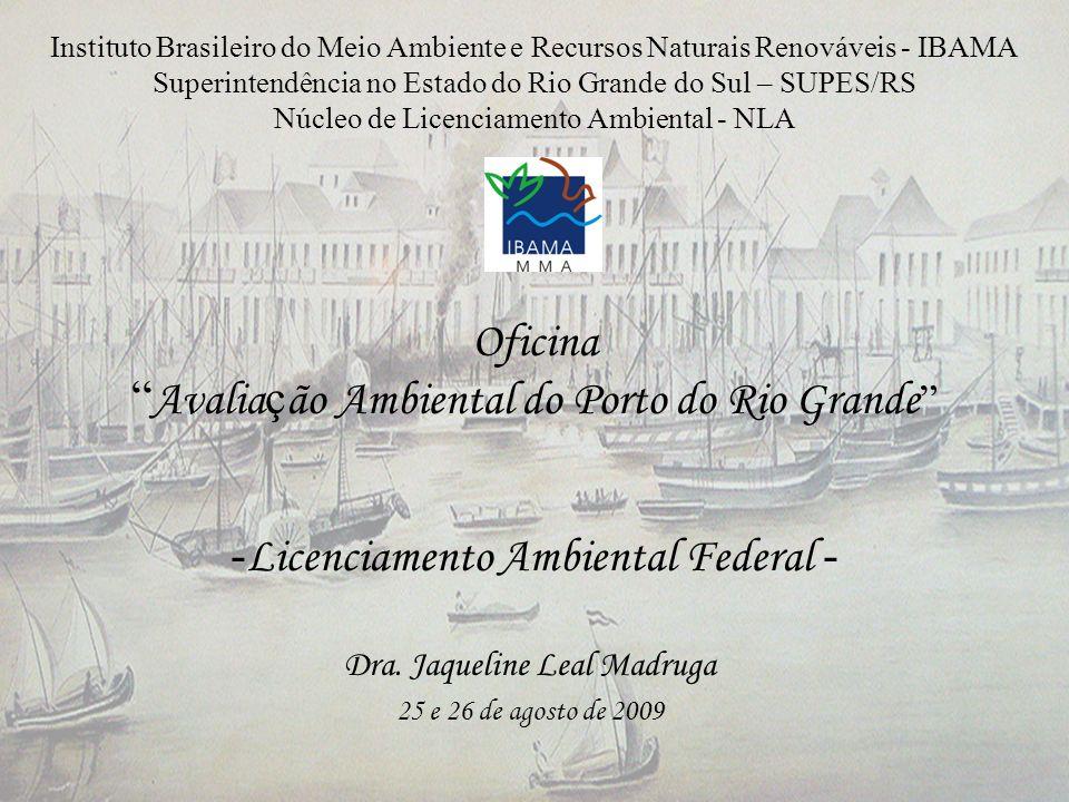 Oficina Avalia ç ão Ambiental do Porto do Rio Grande - Licenciamento Ambiental Federal - Dra. Jaqueline Leal Madruga 25 e 26 de agosto de 2009 Institu