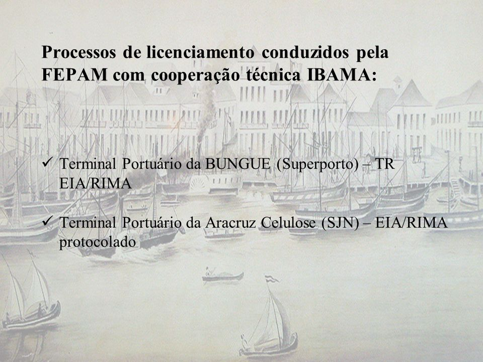 Processos de licenciamento conduzidos pela FEPAM com cooperação técnica IBAMA: Terminal Portuário da BUNGUE (Superporto) – TR EIA/RIMA Terminal Portuá