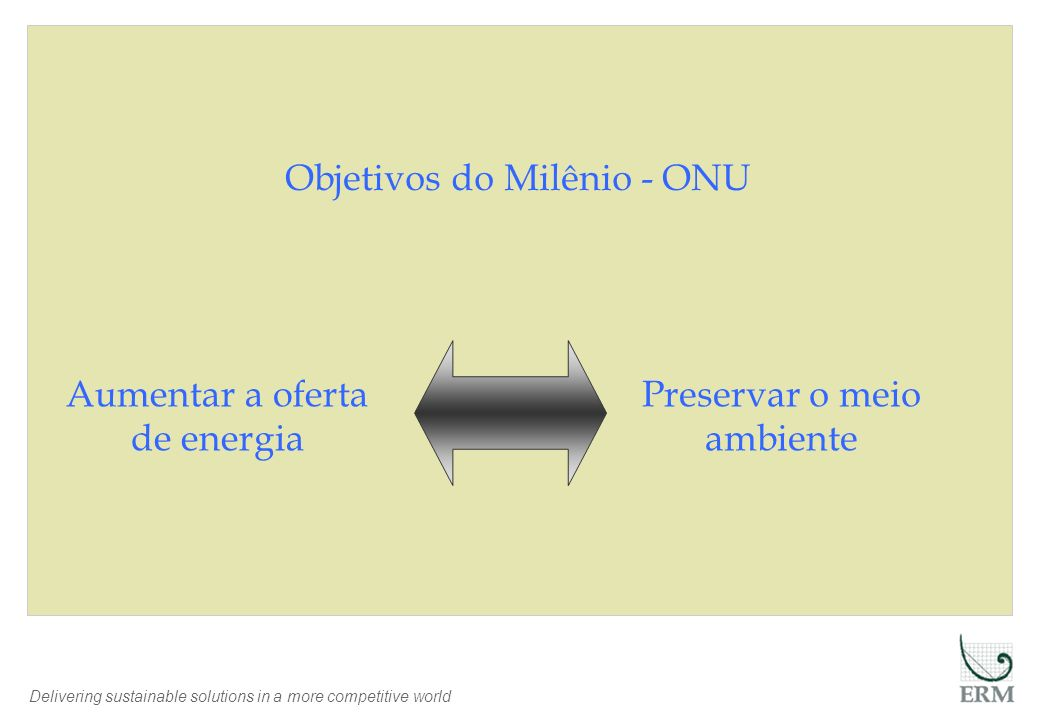 Delivering sustainable solutions in a more competitive world Objetivos do Milênio - ONU Aumentar a oferta de energia Preservar o meio ambiente