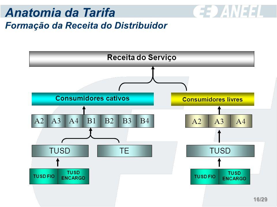 Anatomia da Tarifa Formação da Receita do Distribuidor Receita do Serviço B3 TUSD ENCARGO TE TUSD FIO TUSD B2B4B1A4A3A2 Consumidores cativos A3 TUSD A4A2 Consumidores livres TUSD ENCARGO TUSD FIO 16/29