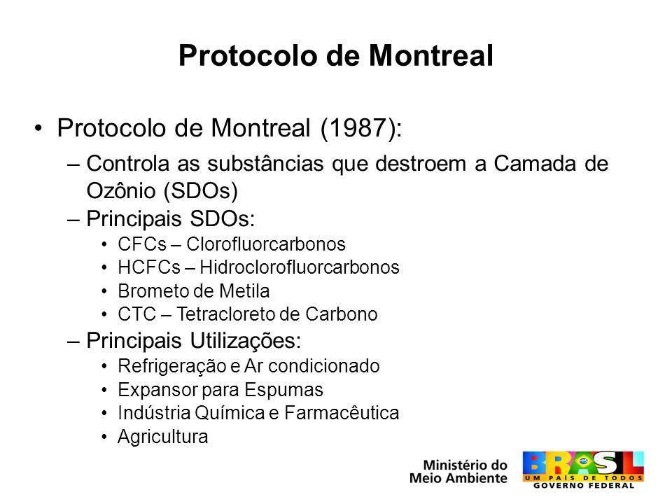 Protocolo de Montreal Protocolo de Montreal (1987): –Controla as substâncias que destroem a Camada de Ozônio (SDOs) –Principais SDOs: CFCs – Clorofluorcarbonos HCFCs – Hidroclorofluorcarbonos Brometo de Metila CTC – Tetracloreto de Carbono –Principais Utilizações: Refrigeração e Ar condicionado Expansor para Espumas Indústria Química e Farmacêutica Agricultura
