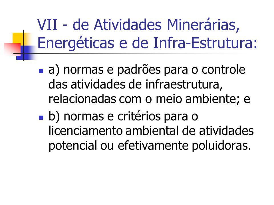 VII - de Atividades Minerárias, Energéticas e de Infra-Estrutura: a) normas e padrões para o controle das atividades de infraestrutura, relacionadas com o meio ambiente; e b) normas e critérios para o licenciamento ambiental de atividades potencial ou efetivamente poluidoras.