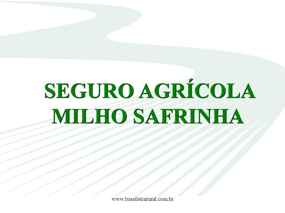 www.brasileirarural.com.br SEGURO AGRÍCOLA MILHO SAFRINHA SEGURO AGRÍCOLA MILHO SAFRINHA