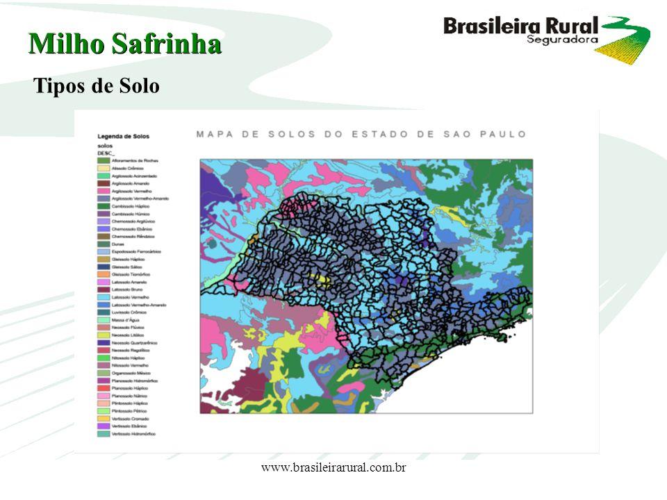 www.brasileirarural.com.br Milho Safrinha Tipos de Solo