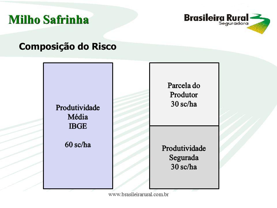 www.brasileirarural.com.br Milho Safrinha Composição do Risco