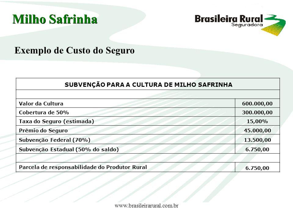 www.brasileirarural.com.br SUBVENÇÃO PARA A CULTURA DE MILHO SAFRINHA Valor da Cultura600.000,00 Cobertura de 50%300.000,00 Taxa do Seguro (estimada)1