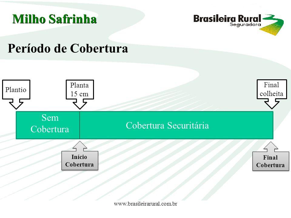 www.brasileirarural.com.br Plantio Planta 15 cm Cobertura Securitária Final colheita Sem Cobertura Período de Cobertura Milho Safrinha Início Cobertur