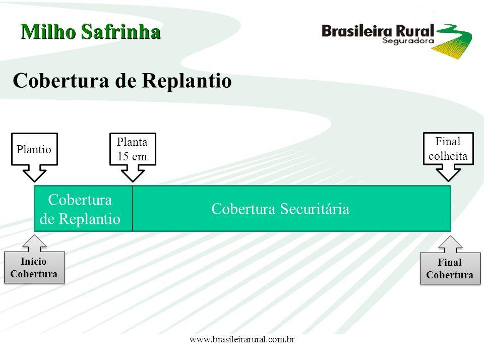 www.brasileirarural.com.br Plantio Planta 15 cm Cobertura Securitária Final colheita Cobertura de Replantio Cobertura de Replantio Milho Safrinha Iníc