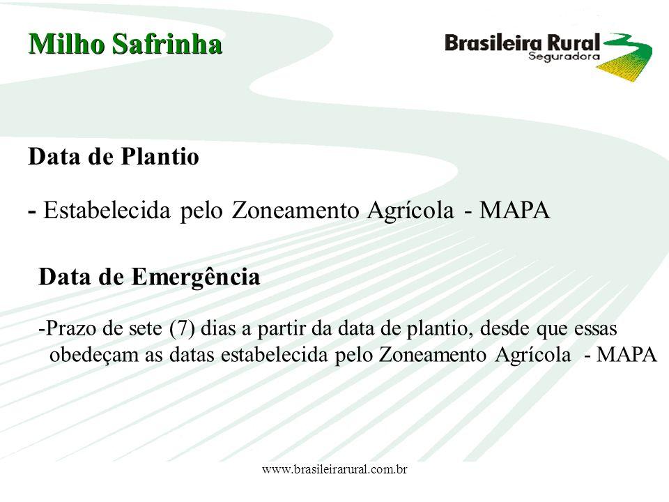 www.brasileirarural.com.br Milho Safrinha Data de Plantio - Estabelecida pelo Zoneamento Agrícola - MAPA Data de Emergência -Prazo de sete (7) dias a