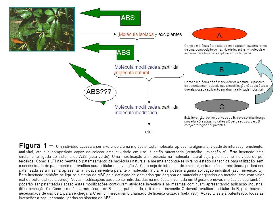A Molécula isolada + excipientes B Molécula modificada a partir da molécula natural Como a molécula é isolada, apenas é patenteável na forma de uma composição com atividade inventiva.
