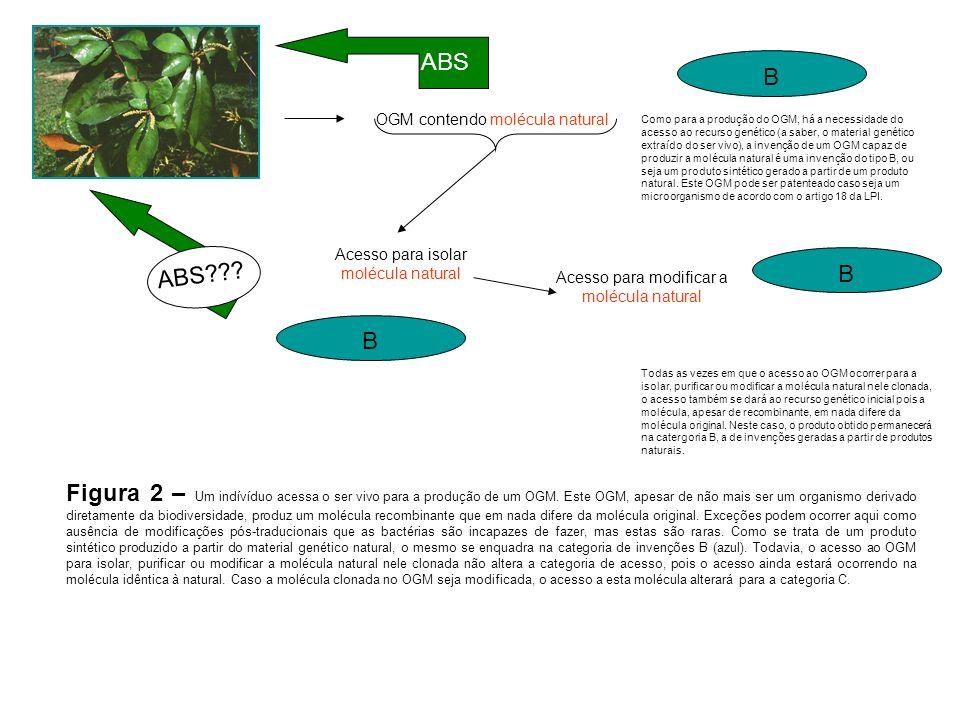 B OGM contendo molécula natural ABS Como para a produção do OGM, há a necessidade do acesso ao recurso genético (a saber, o material genético extraído do ser vivo), a invenção de um OGM capaz de produzir a molécula natural é uma invenção do tipo B, ou seja um produto sintético gerado a partir de um produto natural.