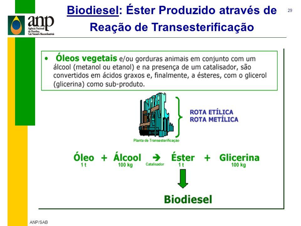 29 ANP/SAB Biodiesel: Éster Produzido através de Reação de Transesterificação Fonte: MME