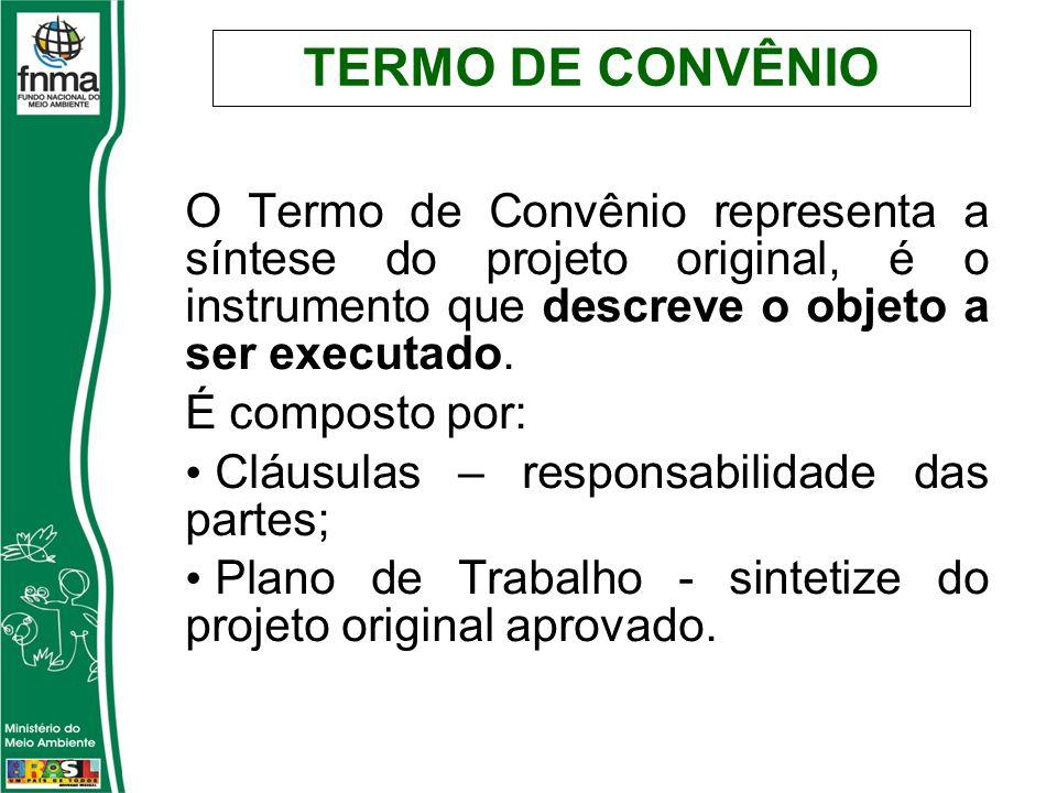TERMO DE CONVÊNIO O Termo de Convênio representa a síntese do projeto original, é o instrumento que descreve o objeto a ser executado. É composto por: