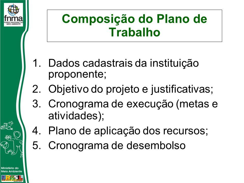 Composição do Plano de Trabalho 1.Dados cadastrais da instituição proponente; 2.Objetivo do projeto e justificativas; 3.Cronograma de execução (metas