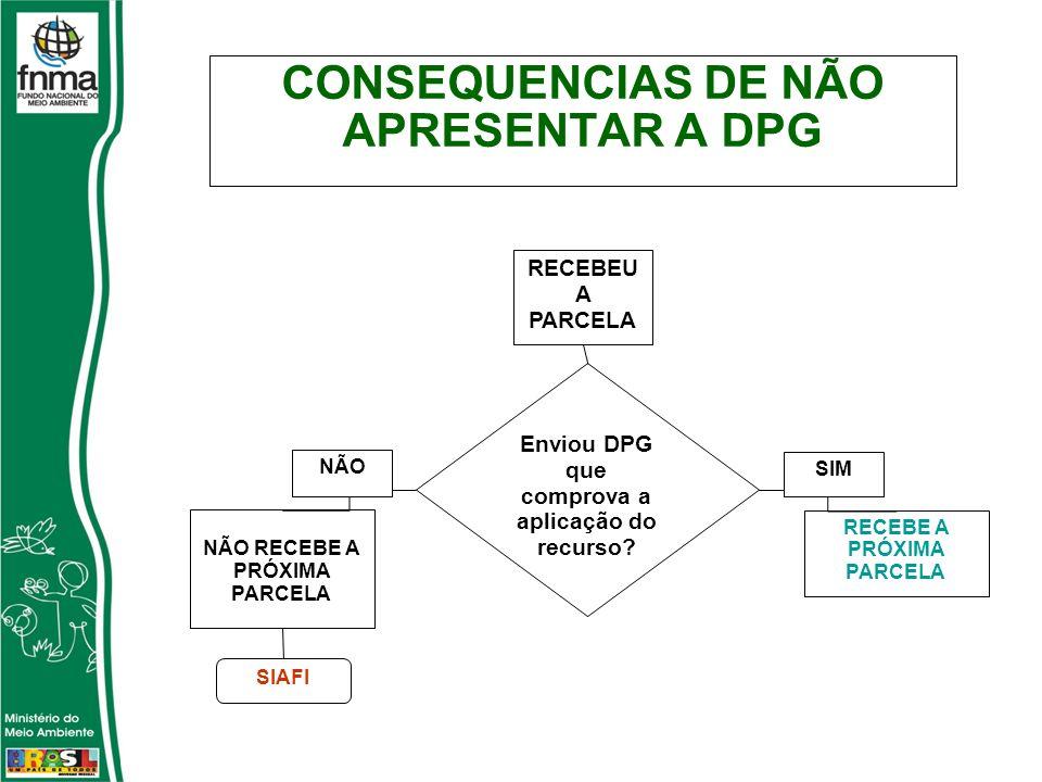 Enviou DPG que comprova a aplicação do recurso.