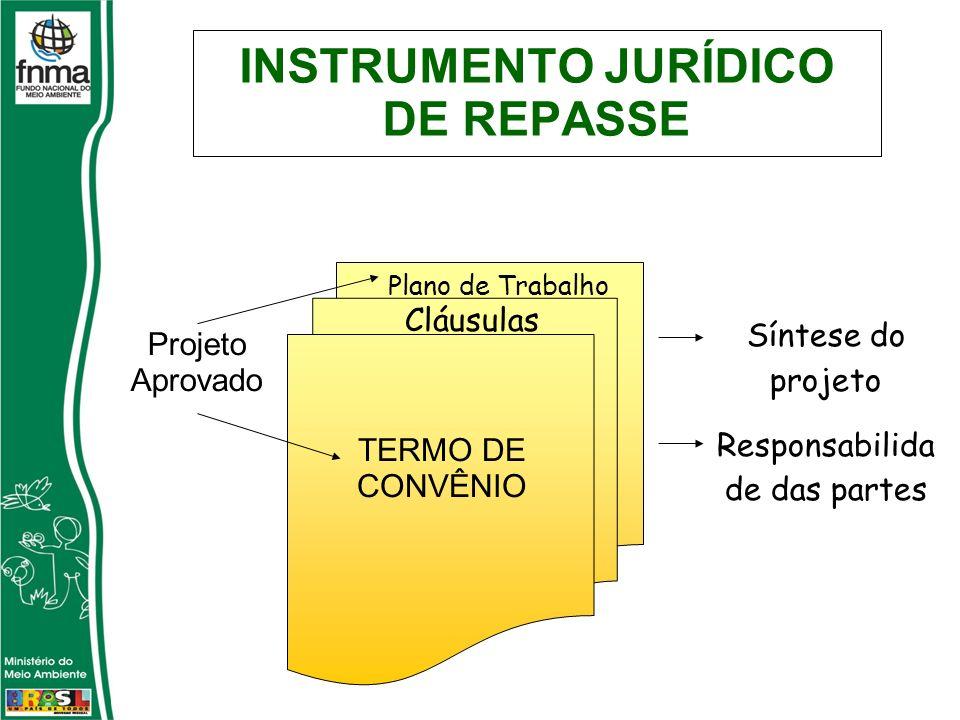 INSTRUMENTO JURÍDICO DE REPASSE Projeto Aprovado TERMO DE CONVÊNIO Plano de Trabalho Cláusulas Síntese do projeto Responsabilida de das partes