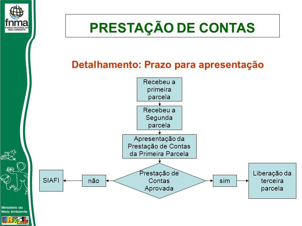PRESTAÇÃO DE CONTAS Detalhamento: Prazo para apresentação Recebeu a primeira parcela Recebeu a Segunda parcela Apresentação da Prestação de Contas da