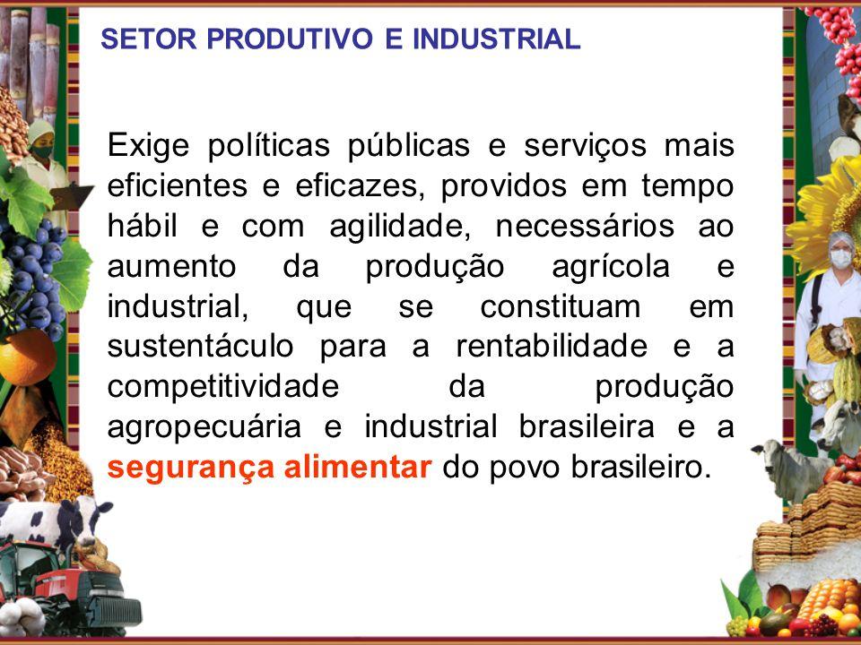 SETOR PRODUTIVO E INDUSTRIAL Exige políticas públicas e serviços mais eficientes e eficazes, providos em tempo hábil e com agilidade, necessários ao a