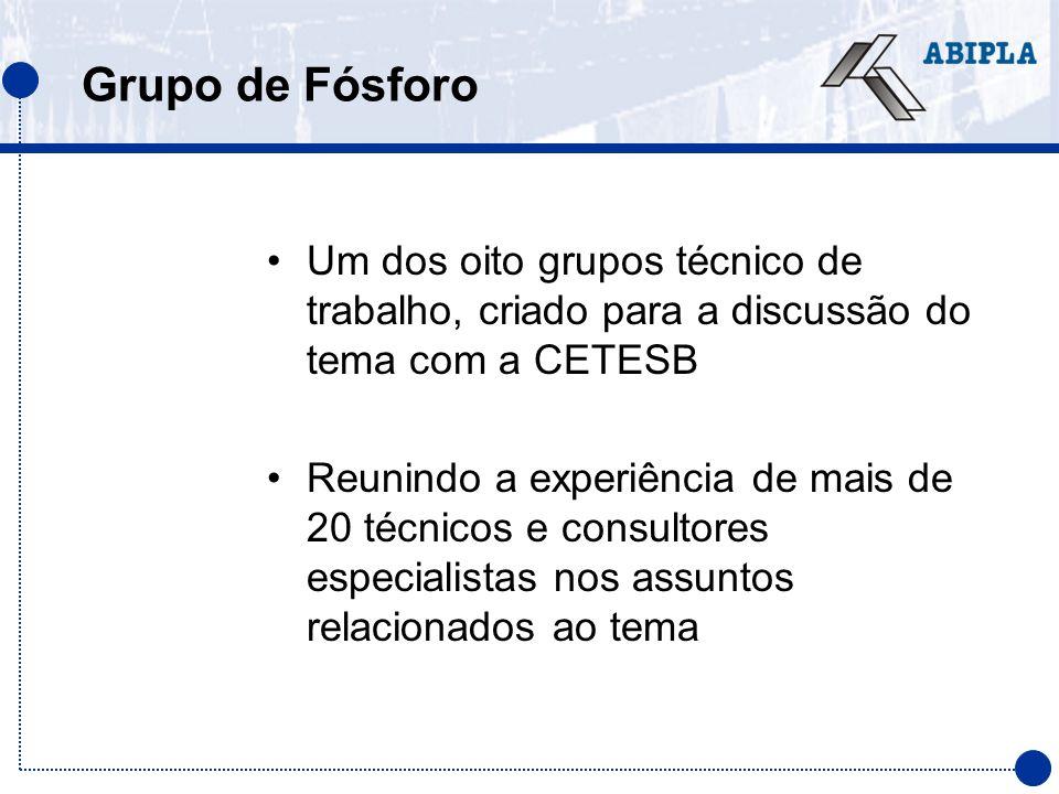 Grupo de Fósforo Um dos oito grupos técnico de trabalho, criado para a discussão do tema com a CETESB Reunindo a experiência de mais de 20 técnicos e