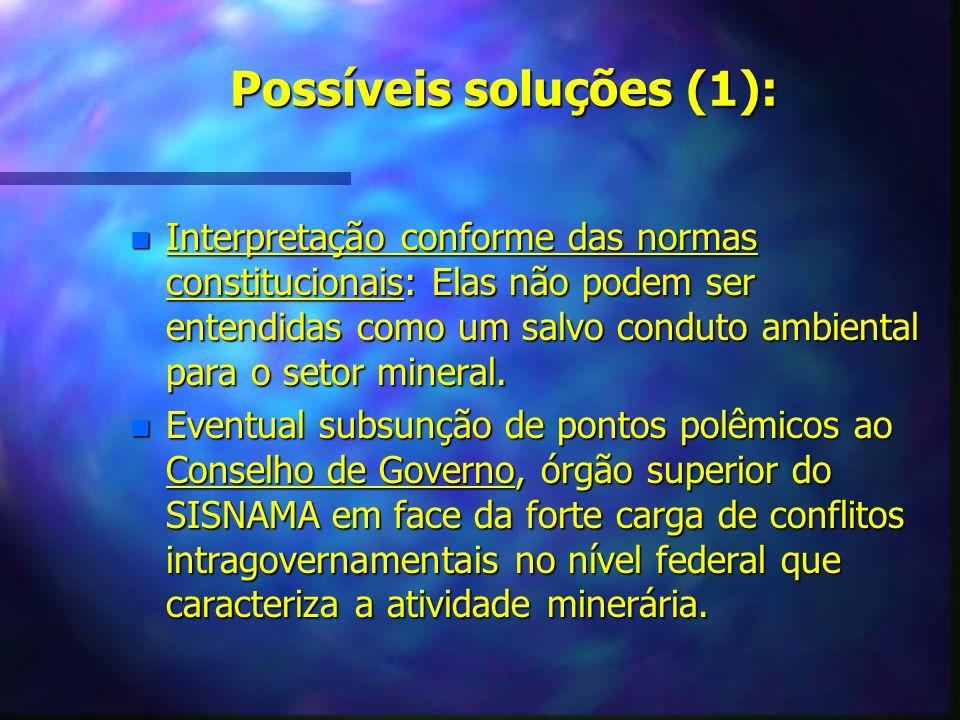 Possíveis soluções (1): n Interpretação conforme das normas constitucionais: Elas não podem ser entendidas como um salvo conduto ambiental para o seto