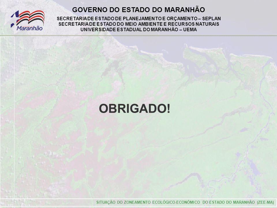 GOVERNO DO ESTADO DO MARANHÃO SECRETARIA DE ESTADO DE PLANEJAMENTO E ORÇAMENTO – SEPLAN SECRETARIA DE ESTADO DO MEIO AMBIENTE E RECURSOS NATURAIS UNIVERSIDADE ESTADUAL DO MARANHÃO – UEMA SITUAÇÃO DO ZONEAMENTO ECOLÓGICO-ECONÔMICO DO ESTADO DO MARANHÃO (ZEE-MA) OBRIGADO!