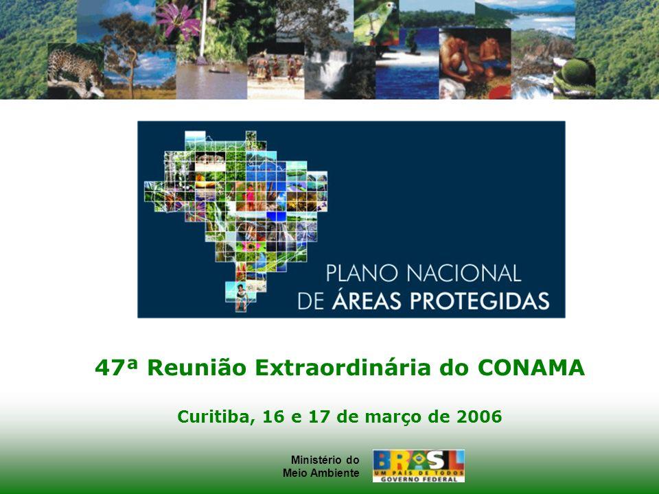 Ministério do Meio Ambiente Ministério do Meio Ambiente 47ª Reunião Extraordinária do CONAMA Curitiba, 16 e 17 de março de 2006
