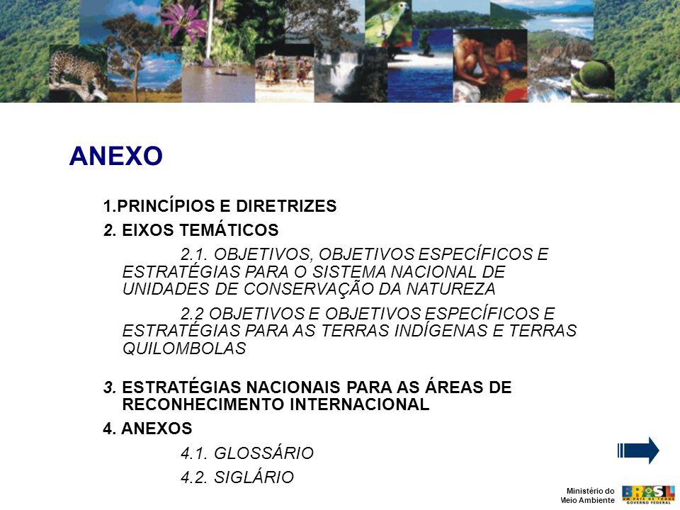 Ministério do Meio Ambiente ANEXO 1.PRINCÍPIOS E DIRETRIZES 2. EIXOS TEMÁTICOS 2.1. OBJETIVOS, OBJETIVOS ESPECÍFICOS E ESTRATÉGIAS PARA O SISTEMA NACI
