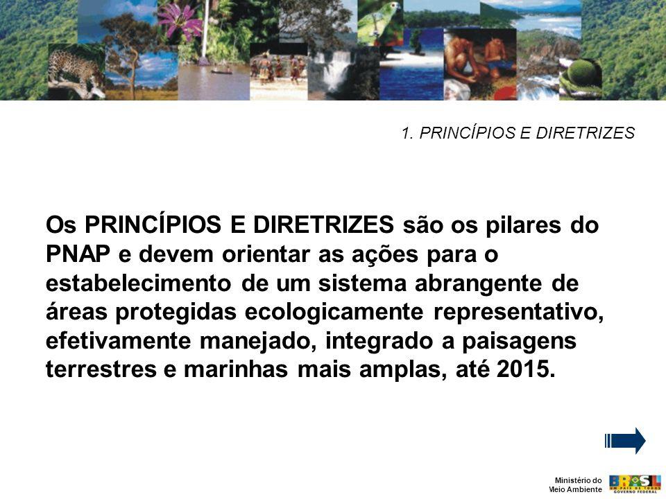 Ministério do Meio Ambiente 1. PRINCÍPIOS E DIRETRIZES Os PRINCÍPIOS E DIRETRIZES são os pilares do PNAP e devem orientar as ações para o estabelecime