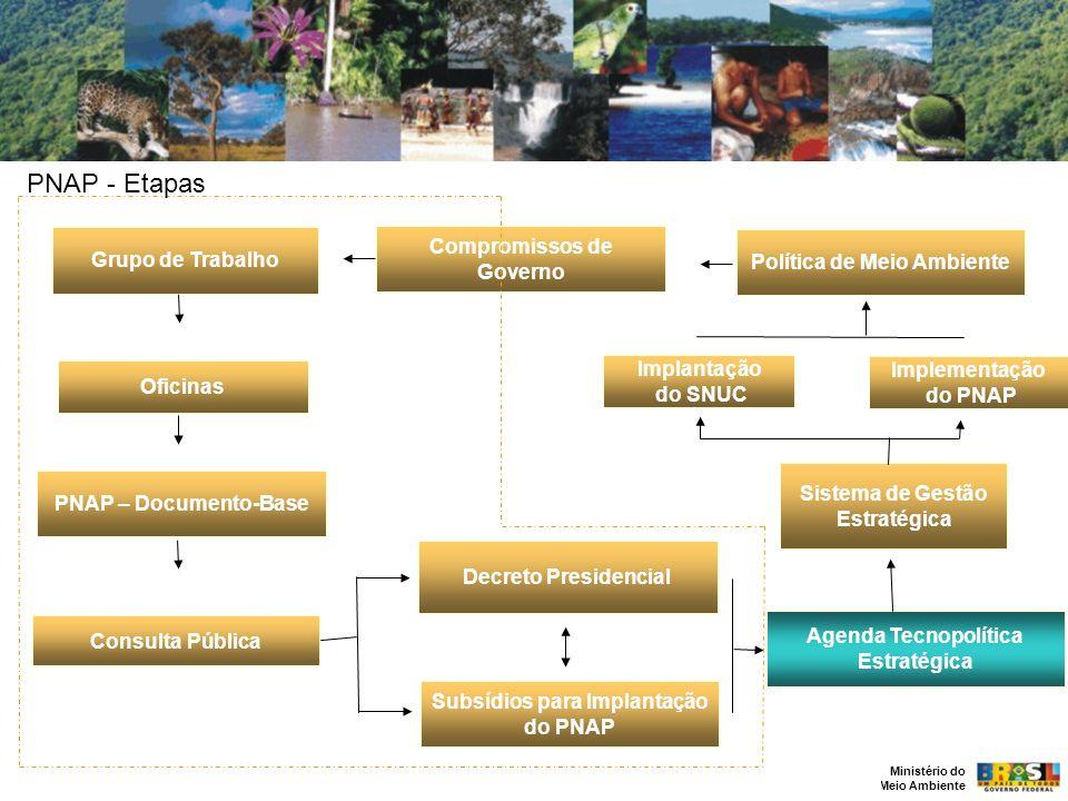 Ministério do Meio Ambiente PNAP – Documento-Base Oficinas Consulta Pública Grupo de Trabalho Compromissos de Governo Política de Meio Ambiente Sistem