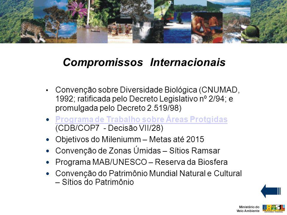 Ministério do Meio Ambiente Compromissos Internacionais Convenção sobre Diversidade Biológica (CNUMAD, 1992; ratificada pelo Decreto Legislativo nº 2/94; e promulgada pelo Decreto 2.519/98) Programa de Trabalho sobre Áreas Protgidas (CDB/COP7 - Decisão VII/28) Programa de Trabalho sobre Áreas Protgidas Objetivos do Mileniumm – Metas até 2015 Convenção de Zonas Úmidas – Sítios Ramsar Programa MAB/UNESCO – Reserva da Biosfera Convenção do Patrimônio Mundial Natural e Cultural – Sítios do Patrimônio