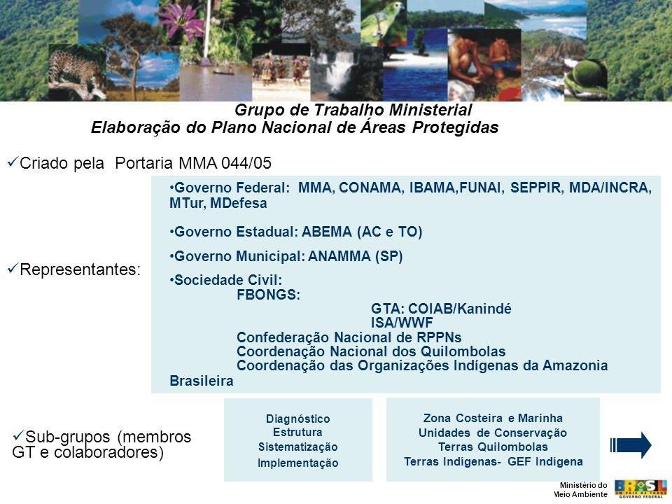 Ministério do Meio Ambiente Criado pela Portaria MMA 044/05 Representantes: Governo Federal: MMA, CONAMA, IBAMA,FUNAI, SEPPIR, MDA/INCRA, MTur, MDefes