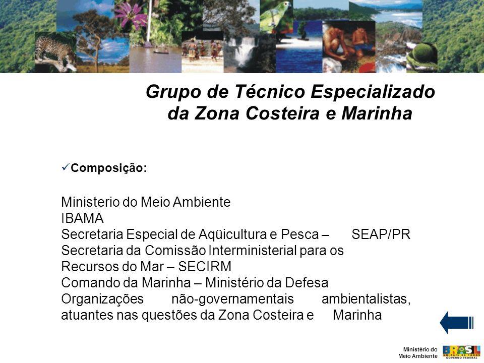 Ministério do Meio Ambiente Grupo de Técnico Especializado da Zona Costeira e Marinha Composição: Ministerio do Meio Ambiente IBAMA Secretaria Especia