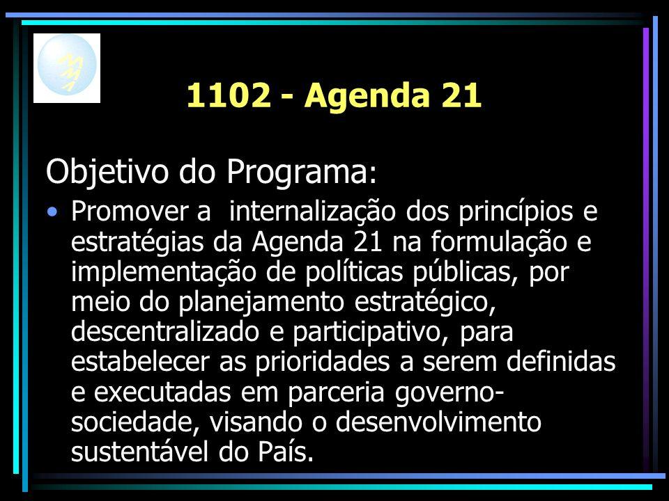 1102 - Agenda 21 Objetivo do Programa : Promover a internalização dos princípios e estratégias da Agenda 21 na formulação e implementação de políticas públicas, por meio do planejamento estratégico, descentralizado e participativo, para estabelecer as prioridades a serem definidas e executadas em parceria governo- sociedade, visando o desenvolvimento sustentável do País.