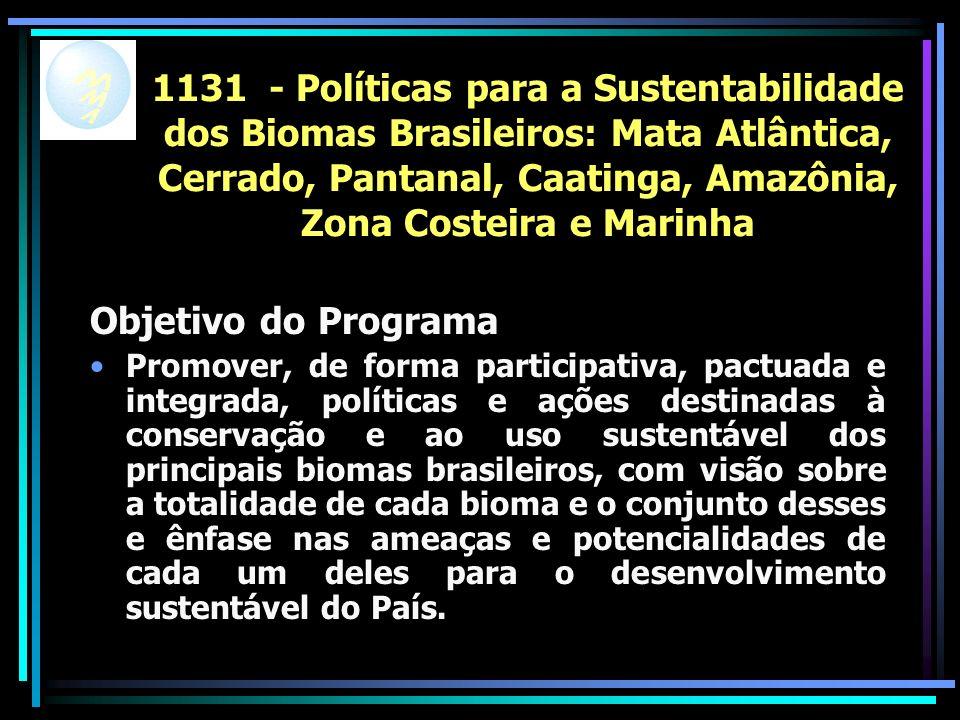 1131 - Políticas para a Sustentabilidade dos Biomas Brasileiros: Mata Atlântica, Cerrado, Pantanal, Caatinga, Amazônia, Zona Costeira e Marinha Objetivo do Programa Promover, de forma participativa, pactuada e integrada, políticas e ações destinadas à conservação e ao uso sustentável dos principais biomas brasileiros, com visão sobre a totalidade de cada bioma e o conjunto desses e ênfase nas ameaças e potencialidades de cada um deles para o desenvolvimento sustentável do País.
