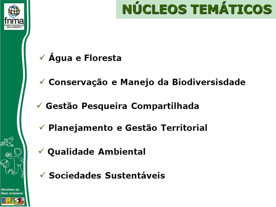 NÚCLEOS TEMÁTICOS Água e Floresta Conservação e Manejo da Biodiversisdade Planejamento e Gestão Territorial Sociedades Sustentáveis Qualidade Ambiental Gestão Pesqueira Compartilhada