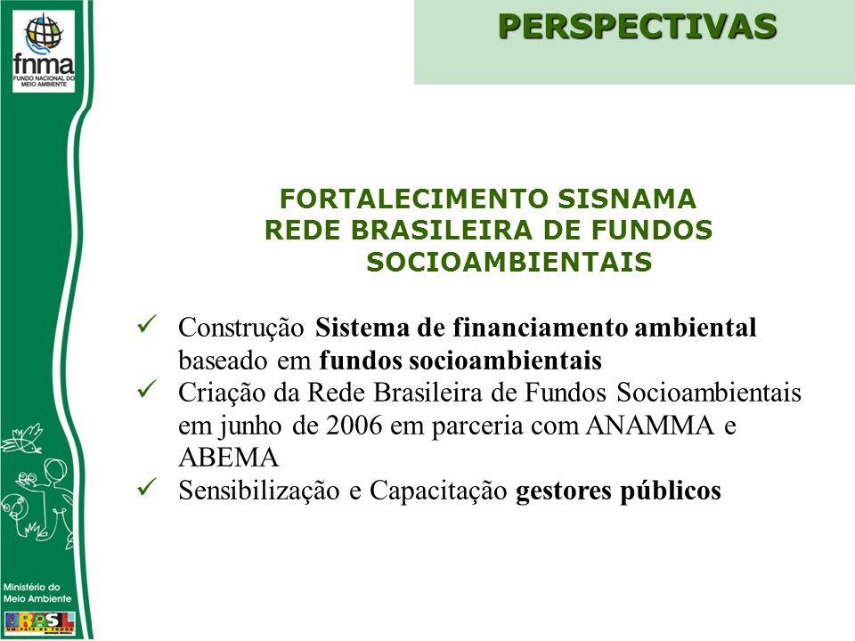 FORTALECIMENTO SISNAMA REDE BRASILEIRA DE FUNDOS SOCIOAMBIENTAIS Construção Sistema de financiamento ambiental baseado em fundos socioambientais Criação da Rede Brasileira de Fundos Socioambientais em junho de 2006 em parceria com ANAMMA e ABEMA Sensibilização e Capacitação gestores públicosPERSPECTIVAS