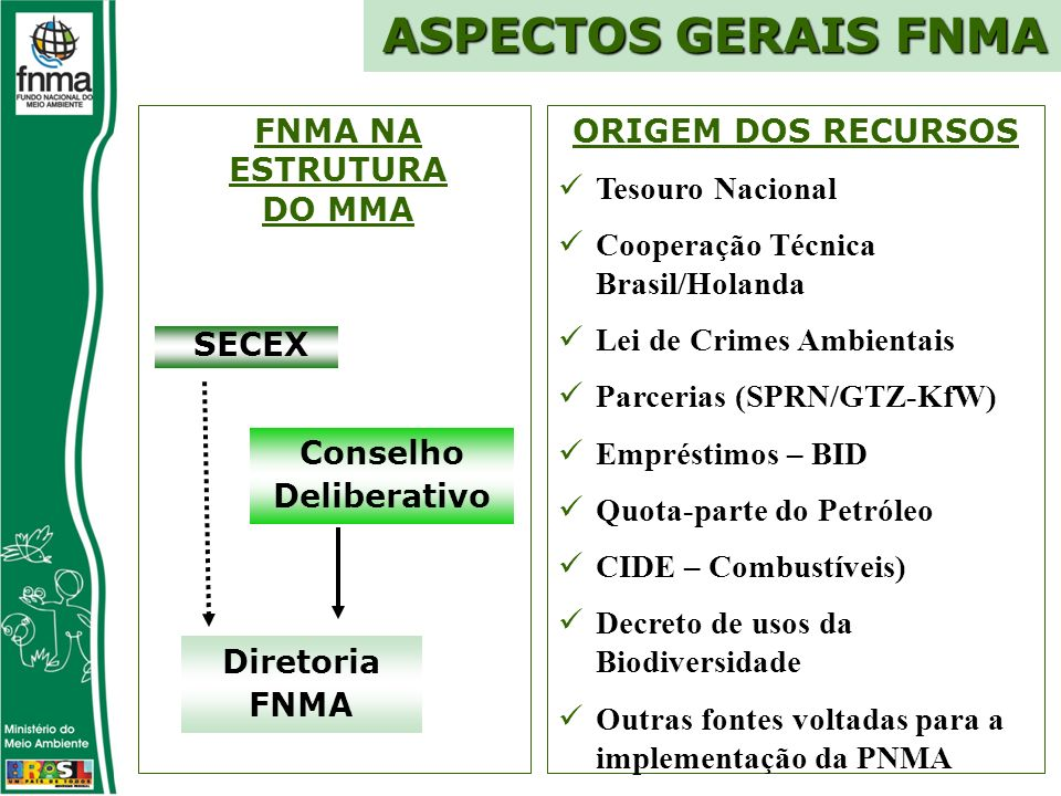 Conselho Deliberativo Diretoria FNMA SECEX ORIGEM DOS RECURSOS Tesouro Nacional Cooperação Técnica Brasil/Holanda Lei de Crimes Ambientais Parcerias (SPRN/GTZ-KfW) Empréstimos – BID Quota-parte do Petróleo CIDE – Combustíveis) Decreto de usos da Biodiversidade Outras fontes voltadas para a implementação da PNMA ASPECTOS GERAIS FNMA FNMA NA ESTRUTURA DO MMA