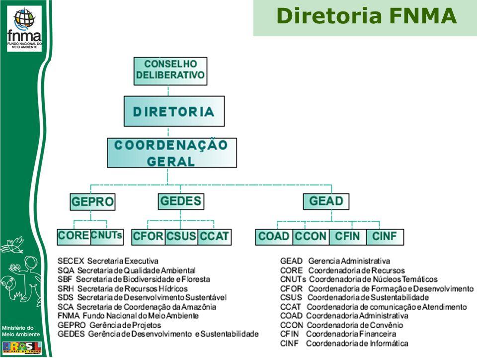 Diretoria FNMA