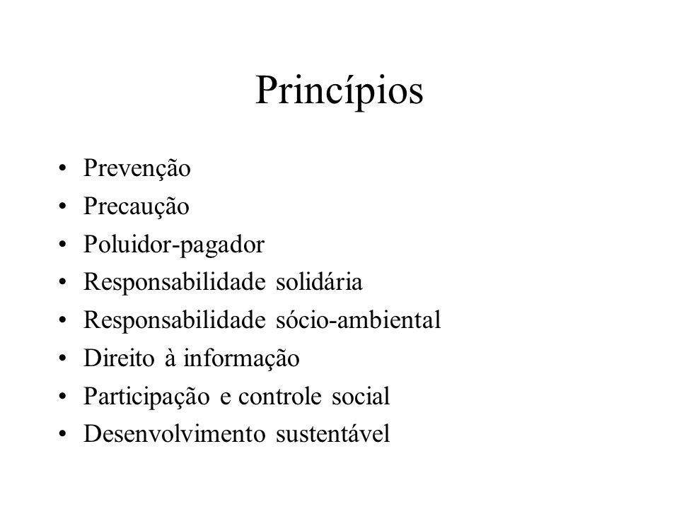 Princípios Prevenção Precaução Poluidor-pagador Responsabilidade solidária Responsabilidade sócio-ambiental Direito à informação Participação e contro
