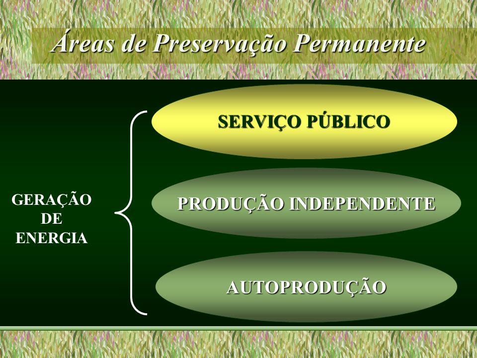 Áreas de Preservação Permanente PRODUÇÃO INDEPENDENTE SERVIÇO PÚBLICO AUTOPRODUÇÃO GERAÇÃO DE ENERGIA