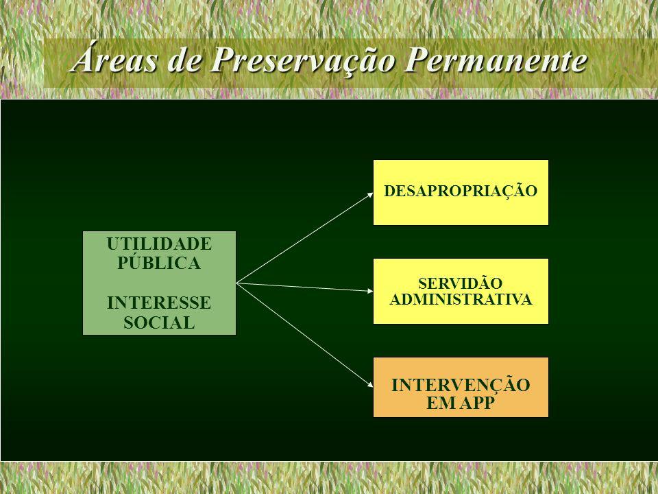 Áreas de Preservação Permanente UTILIDADE PÚBLICA INTERESSE SOCIAL INTERVENÇÃO EM APP SERVIDÃO ADMINISTRATIVA DESAPROPRIAÇÃO