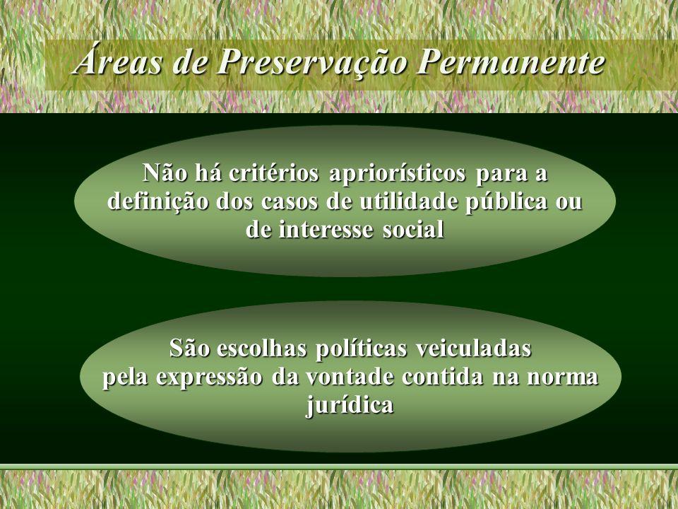Áreas de Preservação Permanente Não há critérios apriorísticos para a definição dos casos de utilidade pública ou de interesse social São escolhas pol