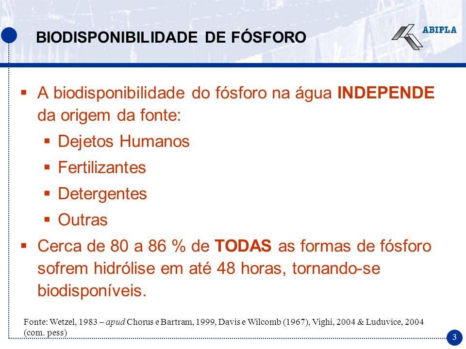 3 A biodisponibilidade do fósforo na água INDEPENDE da origem da fonte: Dejetos Humanos Fertilizantes Detergentes Outras Cerca de 80 a 86 % de TODAS as formas de fósforo sofrem hidrólise em até 48 horas, tornando-se biodisponíveis.