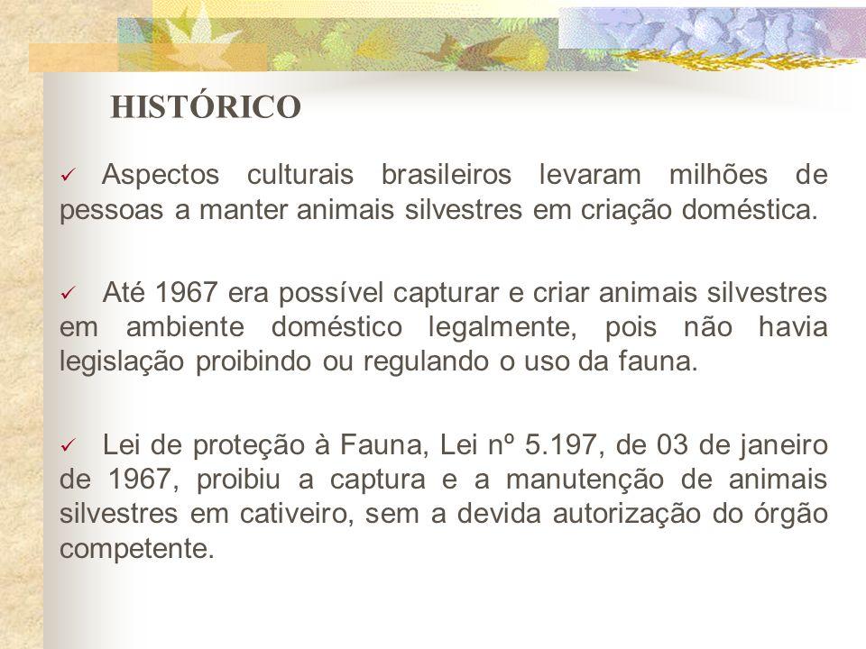 HISTÓRICO Aspectos culturais brasileiros levaram milhões de pessoas a manter animais silvestres em criação doméstica. Até 1967 era possível capturar e