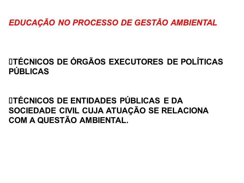 EDUCAÇÃO NO PROCESSO DE GESTÃO AMBIENTAL TÉCNICOS DE ÓRGÃOS EXECUTORES DE POLÍTICAS PÚBLICAS TÉCNICOS DE ENTIDADES PÚBLICAS E DA SOCIEDADE CIVIL CUJA